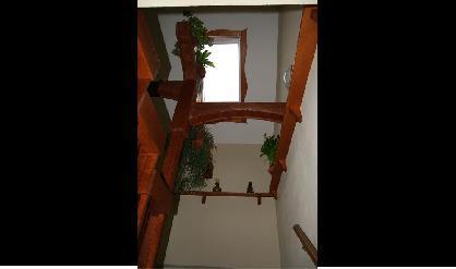 květináč na schodišti